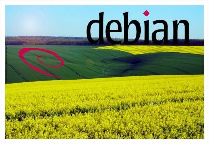 Debian Linux server logo