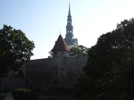 Estonia servidores dedicados