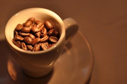 Google caffeine: nuevo algoritmo de busqueda