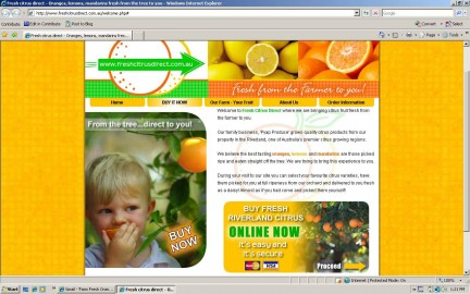 Website vendida por sedo