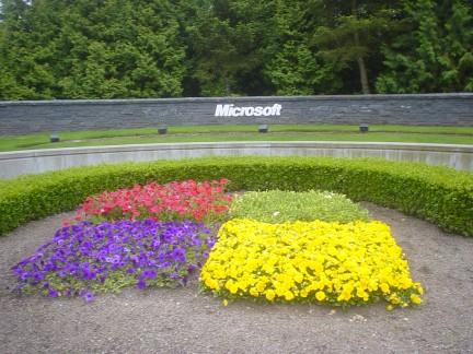 Windows server microsoft