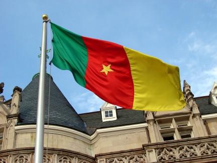 Imagen de la bandera de Cameroon