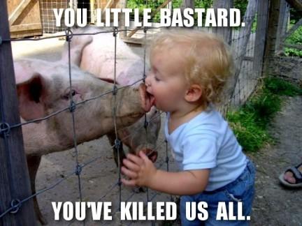 Imagen ilustrativa de la gripe porcina